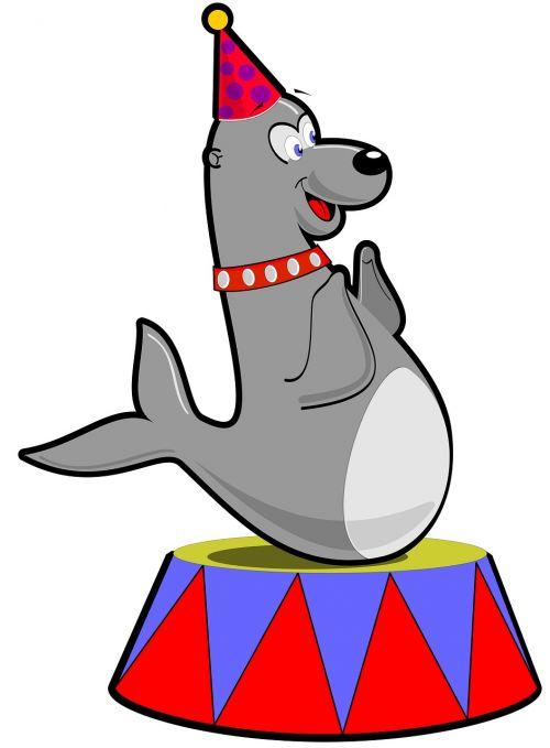buy me a coffee seal mammal