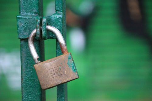 by wlodek green gateway