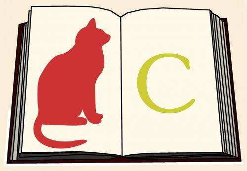 C Is For Cat Book