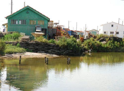 cabin oyster basin
