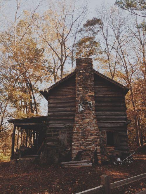 cabin rustic log cabin