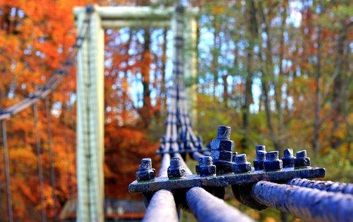 cables steel  bridge  autumn