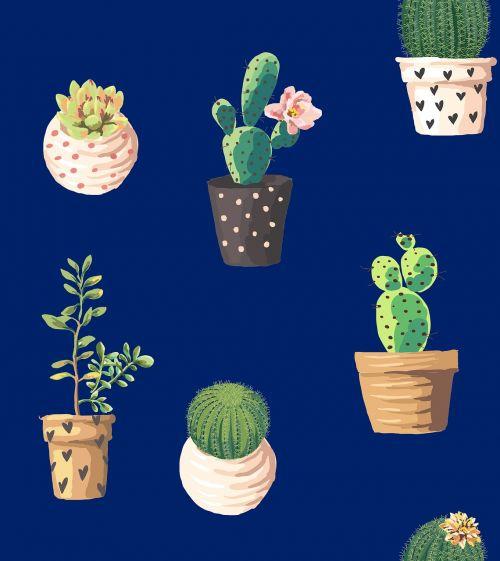 cacti northeast marine