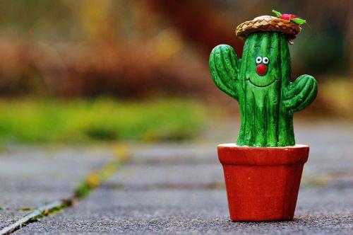 kaktusas,Šiaudinė skrybelė,veidas,juokinga,mielas,juokingas veidas,apdaila,gartendeko,sodas,keramika