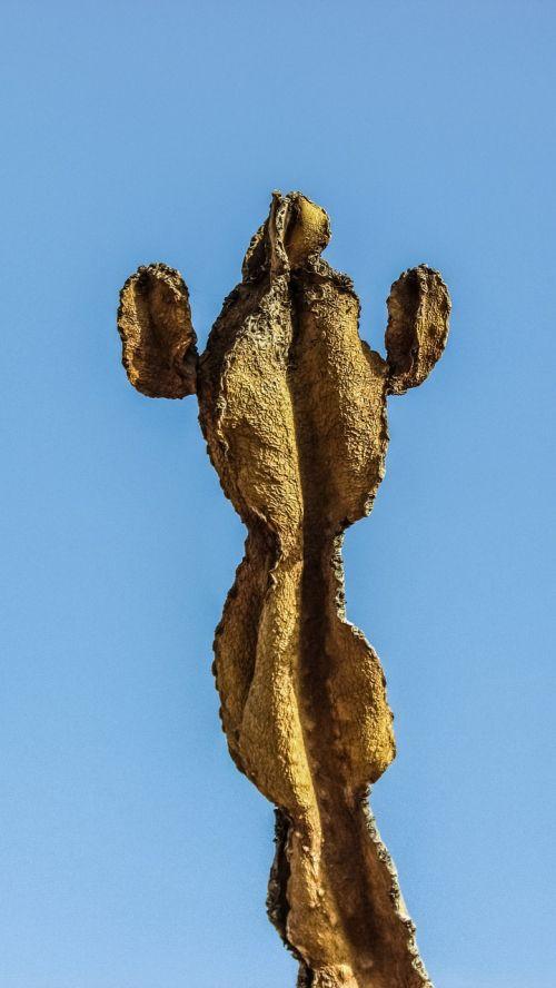 kaktusas,augalas,sausas,Kipras,ayia napa,kaktusas parkas
