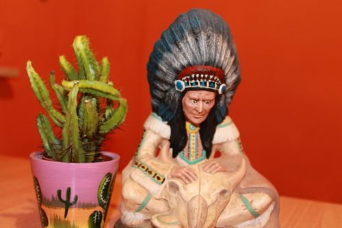 cactus indians chief