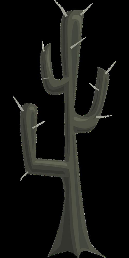 kaktusas,augmenija,augalas,dykuma,flora,natūralus,dygliuotas,smailas,sultingas,erškėtis,botanika,botanikos,aplinka,žalias,sausas,sausas,gamta,nemokama vektorinė grafika