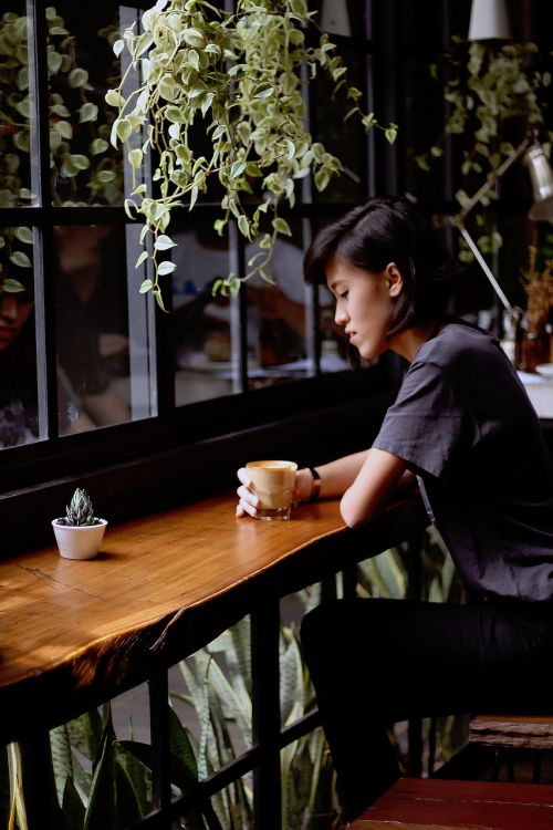 cafe coffee plants