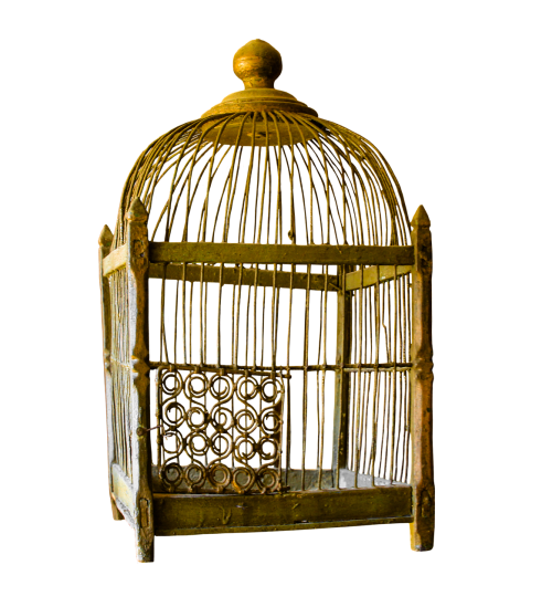 cage gold gilded