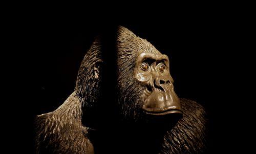 cage caged gorilla