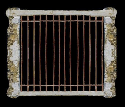 cage  jail  transparent