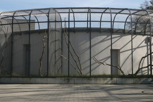 cage zoo enclosure