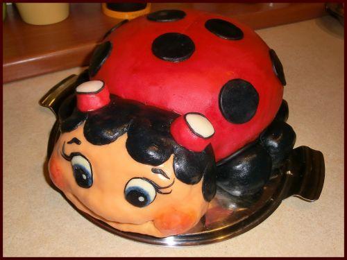 cake ladybug sweetness