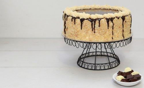 cake  chocolate  cake stand