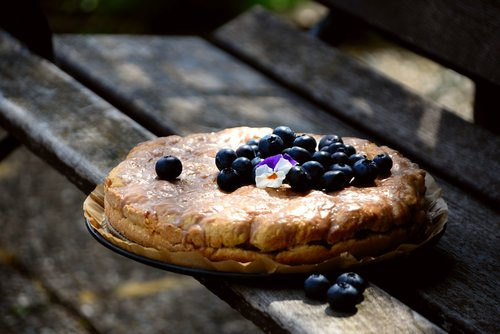 cake  blueberry pie  blueberries