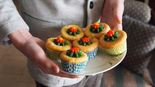 cake cupcake flower