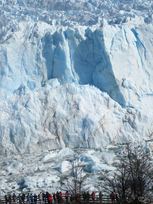 calafate ice patagonia