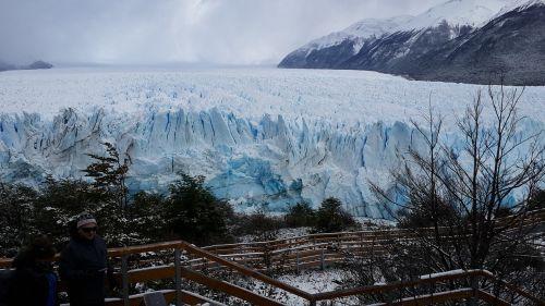 calafate nature patagonia