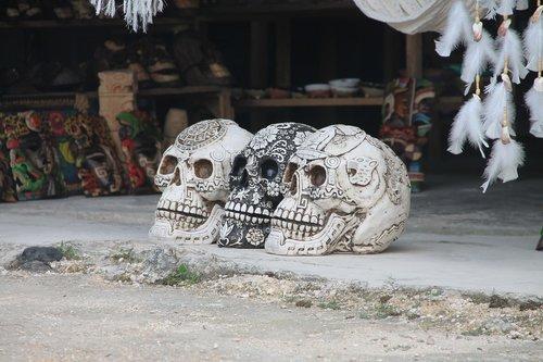 calavera  skull mexican  mexico