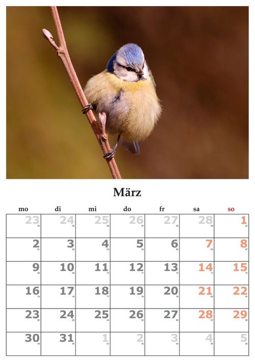calendar month march