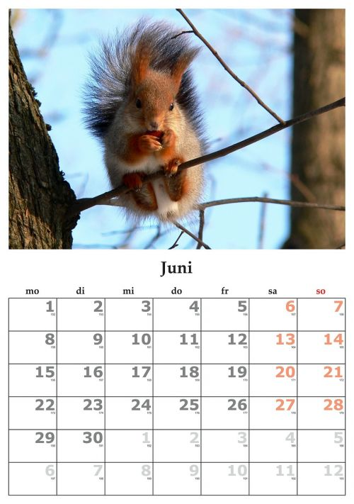 calendar month june