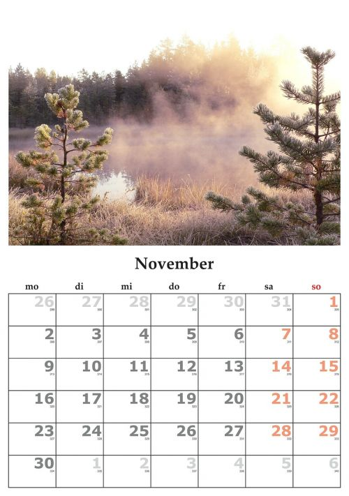 calendar month november