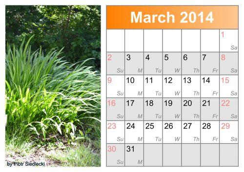 Calendar Month March 2014