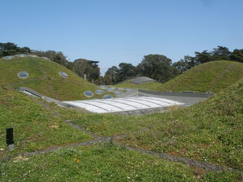 california academy of sciences green roof architecture