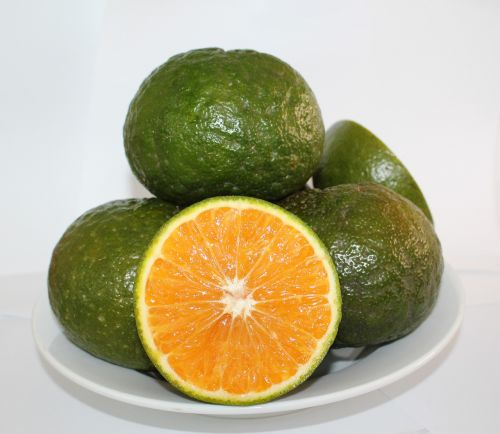 cam sành orange oranges