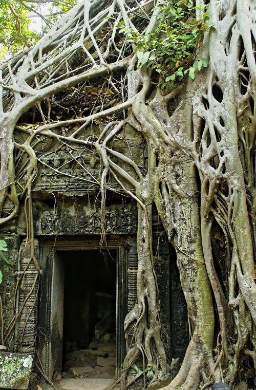 cambodia angkor angkor thom