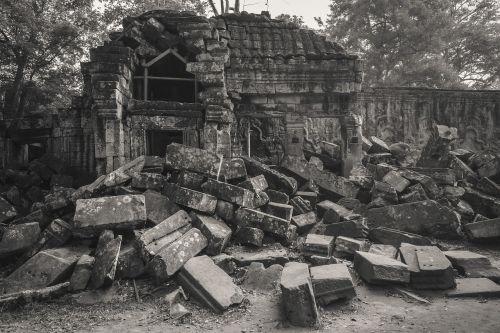 cambodia siem reap ta prohm temple