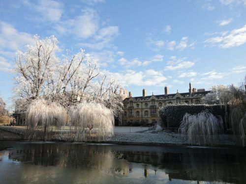 cambridge frost zmrożony