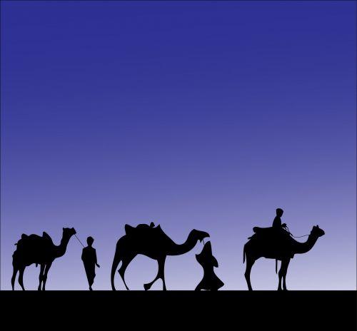 Camel Procession Silhouette