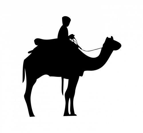 Camel Rider Black Silhouette