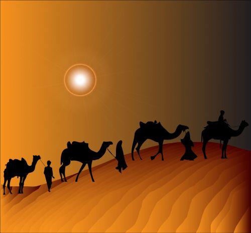 Camel Train Desert Sunset