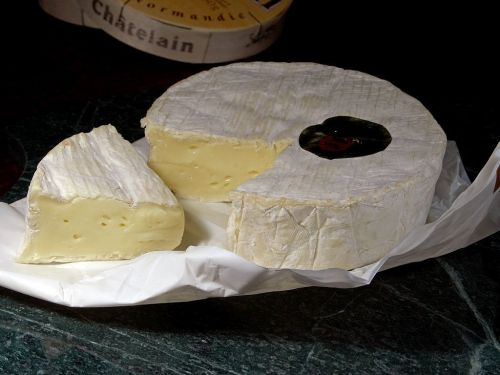 camembert cheese milk product