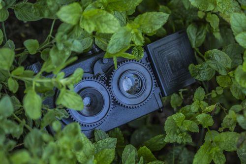 camera mint toy