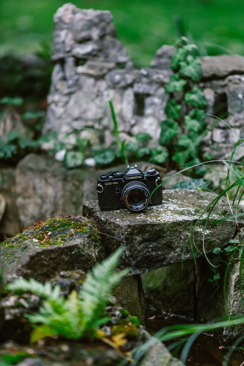 camera retro vintage