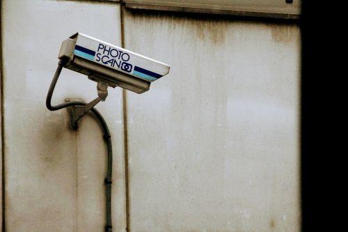 camera monitoring monitor