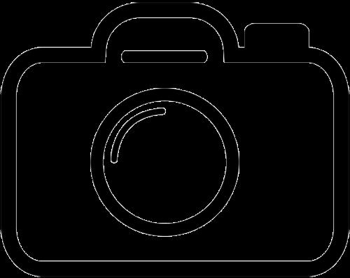 camera the stroke icon