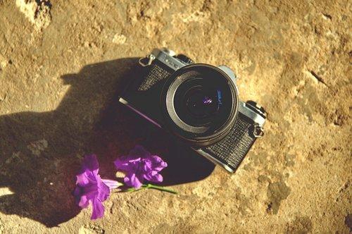 camera  film  pentax