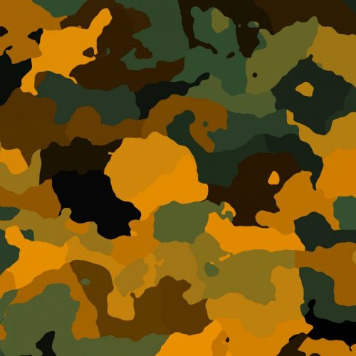 Camouflage (1)