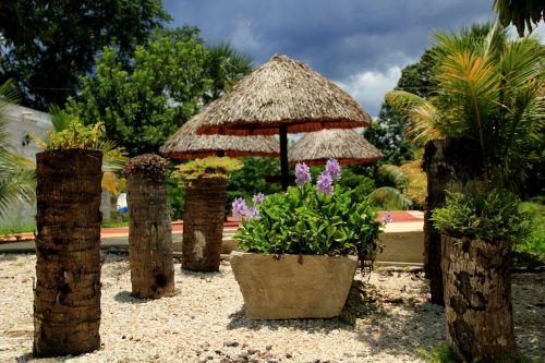stovykla,gėlės,grožis,švieži gamta,gamta,lapai,gražus