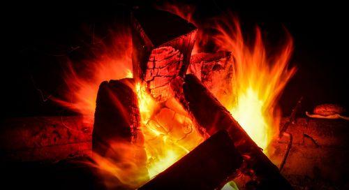 campfire tree fire