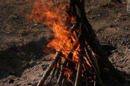 campfire fire wood