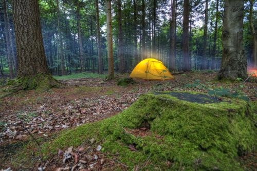 camping tent wilderness