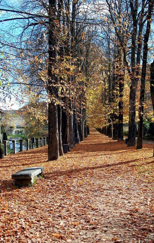 camprodom girona autumn