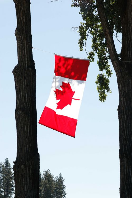 canada day canada canadian