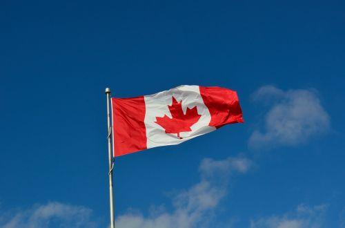 canadian flag canada maple