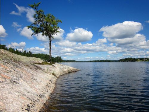 canadian shield lake of the woods rock